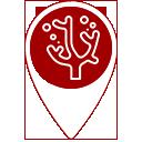 icon-pin